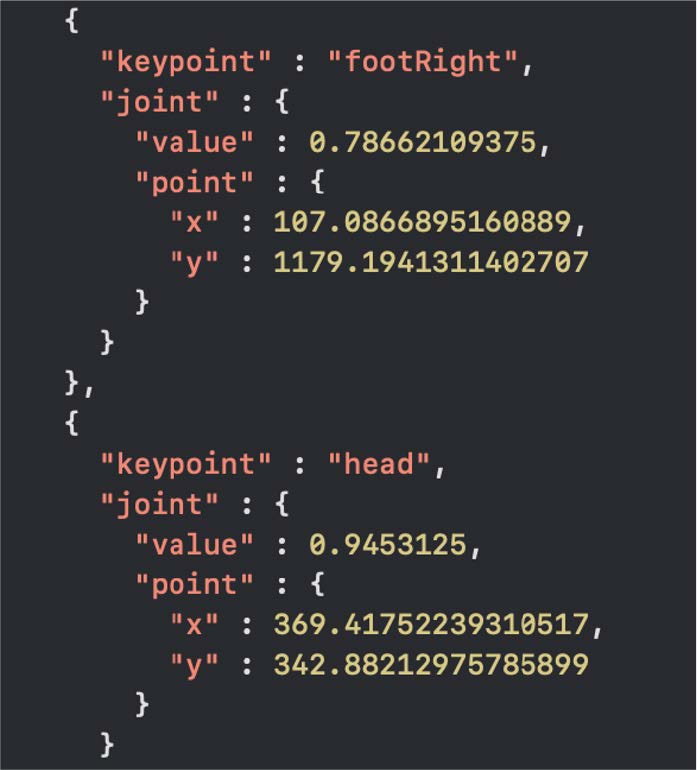 推論結果を画像と座標データで保存