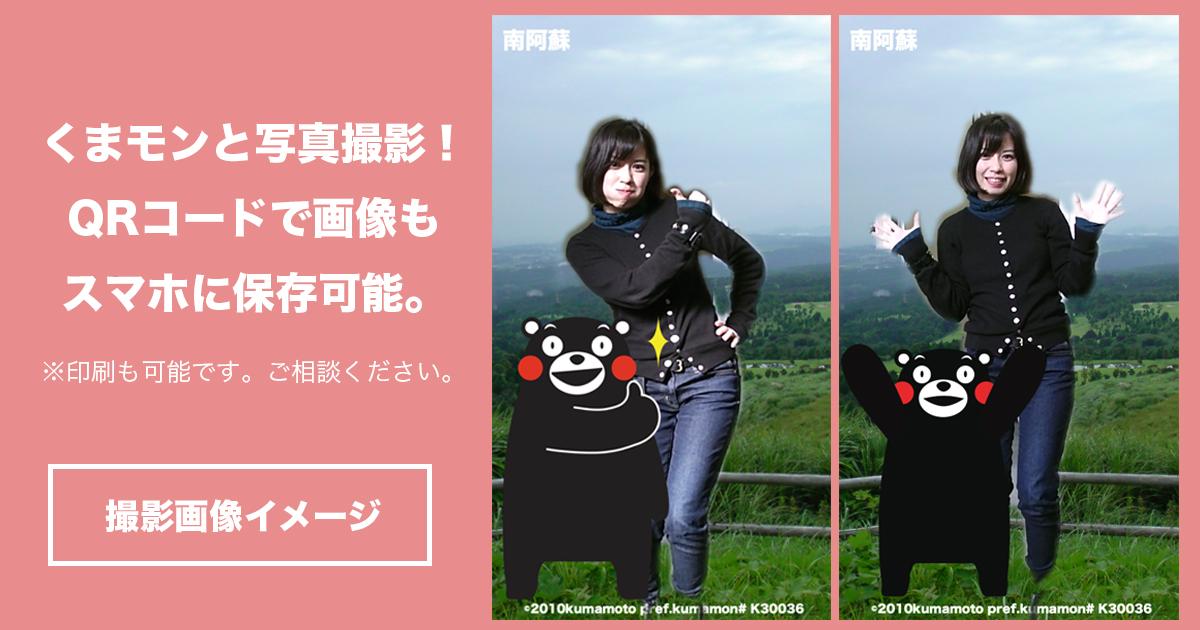 撮影画像イメージ