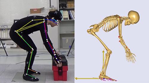 株式会社テラバイトの姿勢推定AIを用いた筋骨格解析に利用